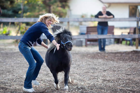 equine assisted therapy, the equine connection, wendy elrick, vernon