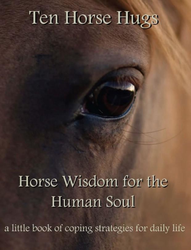 Ten Horse Hugs eBook